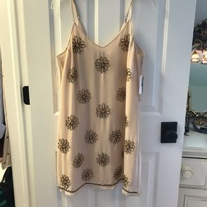 Light Pink Dress with gold accents